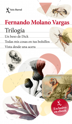 Trílogia: tres esquinas de Fernando Molano – Fernando Molano Vargas | Descargar PDF