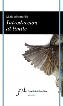 Introducción al límite - María Alcantarilla | Planeta de Libros