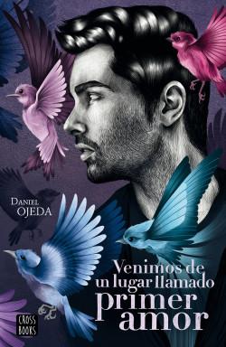 Venimos de un lugar llamado primer amor - Daniel Ojeda Checa | Planeta de Libros