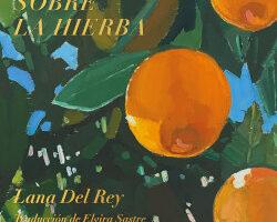 Violet hace el puente sobre la hierba – Lana Del Rey | Descargar PDF