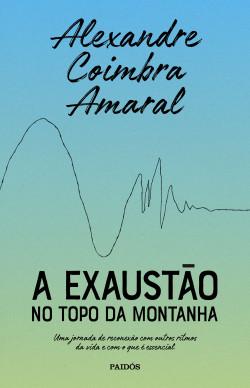 A exaustão no topo da montanha – Alexandre Coimbra Amaral   PlanetadeLibros